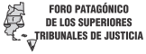 Foro Patagonico de Superiores Tribunales de Justicia